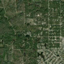 Weeki Wachee Florida Map.Weeki Wachee River Fl Fishing Reports Map Hot Spots