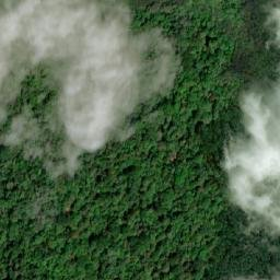Eucapacific Eucalyptus Plantations Ecuador Ejatlas