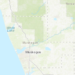 Muskegon Property Viewer